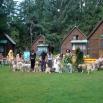 Tábor Albeř 2007